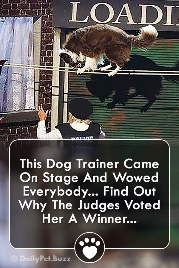 This Dog Trainer Came On Stage And Wowed Everybody... Find Out Why The Judges Voted Her A Winner...