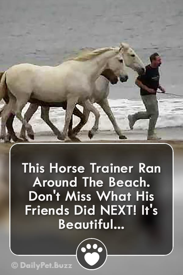 This Horse Trainer Ran Around The Beach. Don\'t Miss What His Friends Did NEXT! It\'s Beautiful...