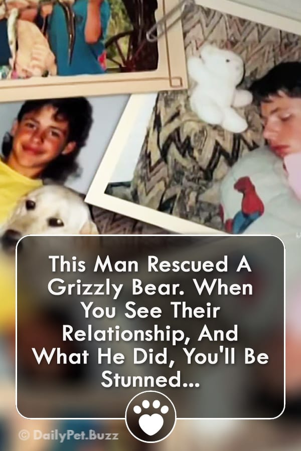 This Man Rescued A Grizzly Bear. When You See Their Relationship, And What He Did, You\'ll Be Stunned...