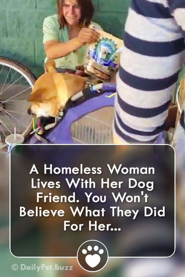 A Homeless Woman Lives With Her Dog Friend. You Won\'t Believe What They Did For Her...