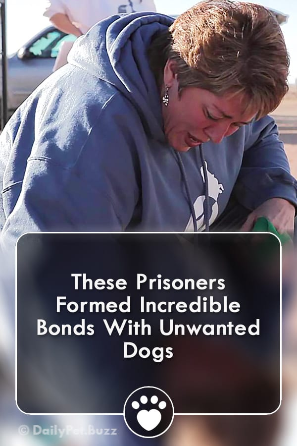 These Prisoners Formed Incredible Bonds With Unwanted Dogs
