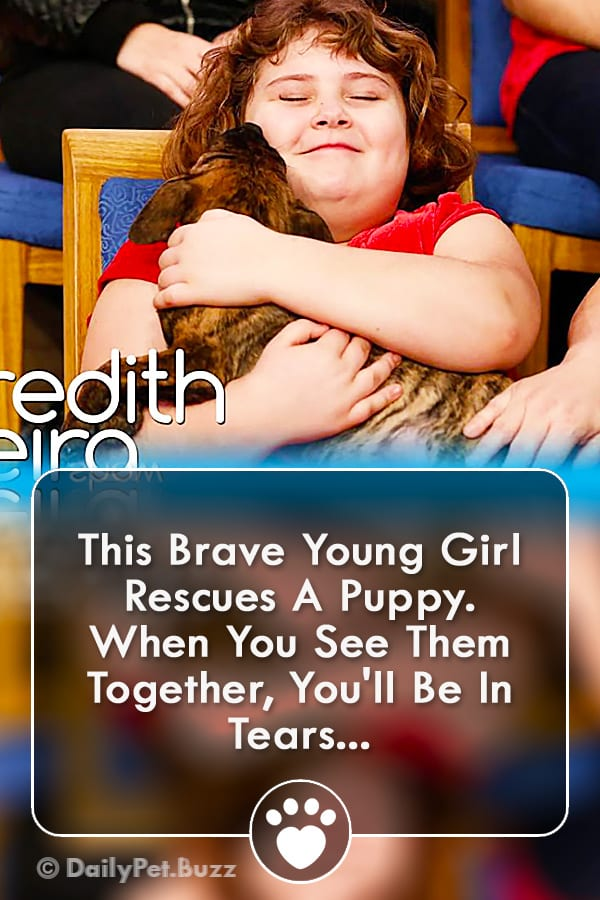 This Brave Young Girl Rescues A Puppy. When You See Them Together, You\'ll Be In Tears...