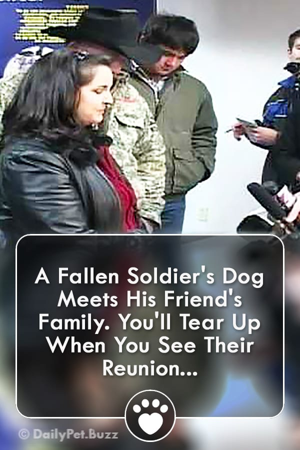 A Fallen Soldier\'s Dog Meets His Friend\'s Family. You\'ll Tear Up When You See Their Reunion...
