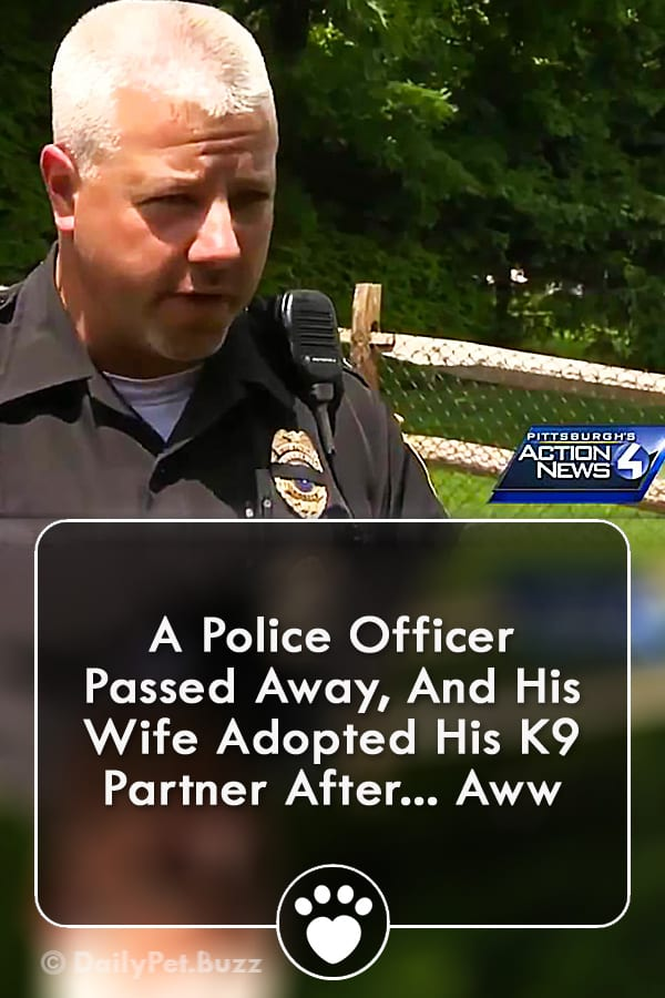 A Police Officer Passed Away, And His Wife Adopted His K9 Partner After... Aww