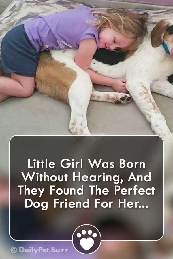 Little Girl Was Born Without Hearing, And They Found The Perfect Dog Friend For Her...