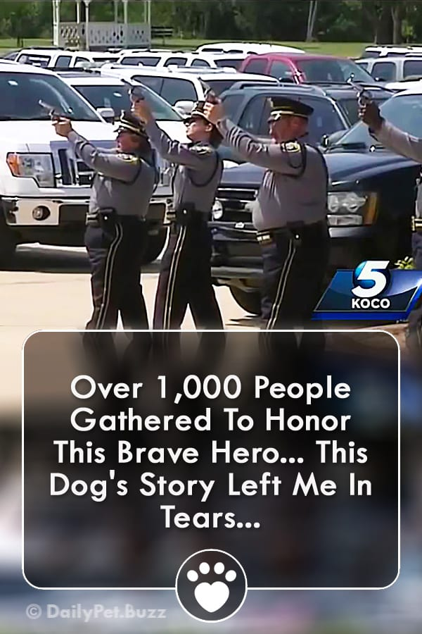 Over 1,000 People Gathered To Honor This Brave Hero... This Dog\'s Story Left Me In Tears...