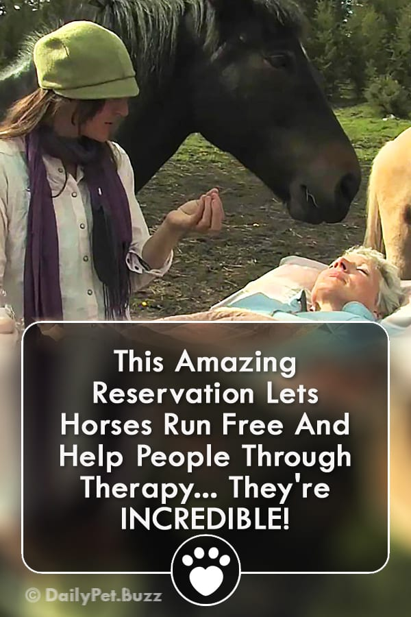 This Amazing Reservation Lets Horses Run Free And Help People Through Therapy... They\'re INCREDIBLE!