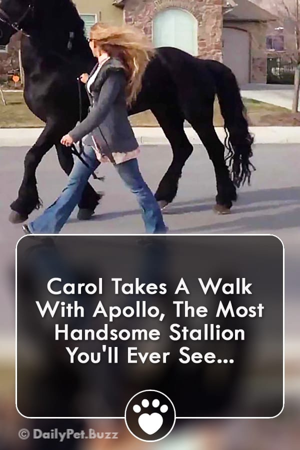 Carol Takes A Walk With Apollo, The Most Handsome Stallion You\'ll Ever See...