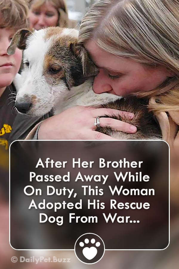 After Her Brother Passed Away While On Duty, This Woman Adopted His Rescue Dog From War...