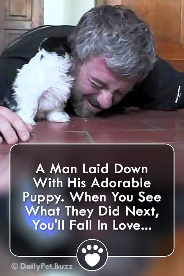 A Man Laid Down With His Adorable Puppy. When You See What They Did Next, You\'ll Fall In Love...