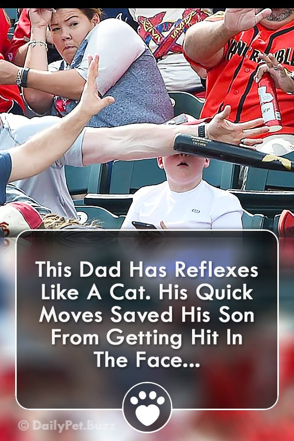 This Dad Has Reflexes Like A Cat. His Quick Moves Saved His Son From Getting Hit In The Face...