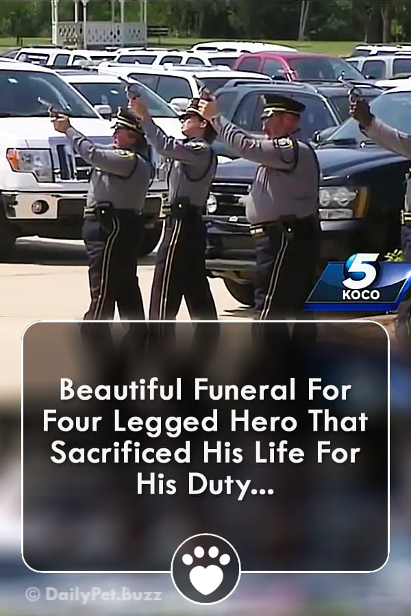 Beautiful Funeral For Four Legged Hero That Sacrificed His Life For His Duty...