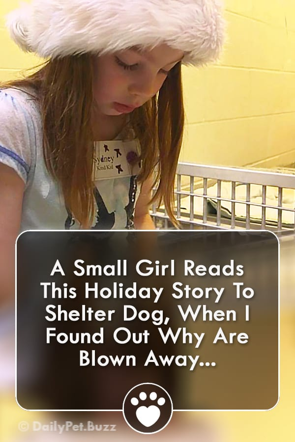 A Small Girl Reads This Holiday Story To Shelter Dog, When I Found Out Why Are Blown Away...