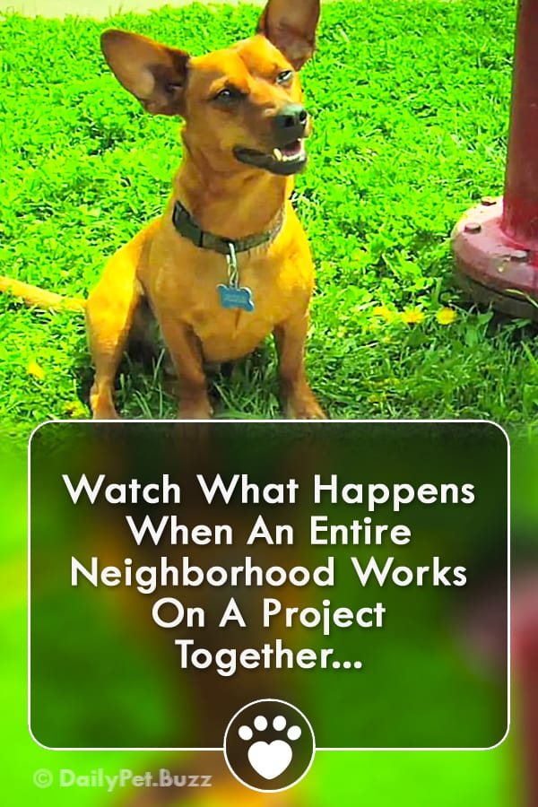 Watch What Happens When An Entire Neighborhood Works On A Project Together...