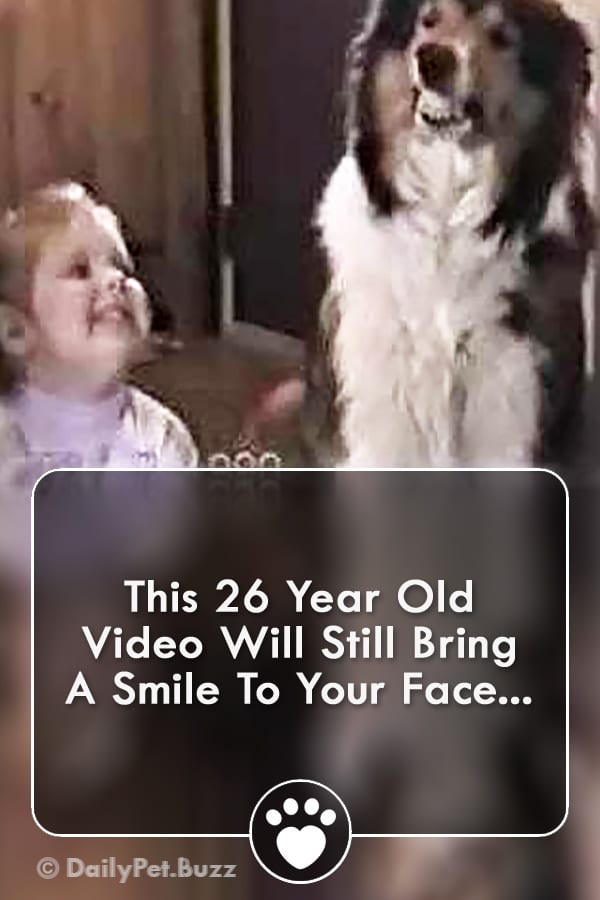 This 26 Year Old Video Will Still Bring A Smile To Your Face...