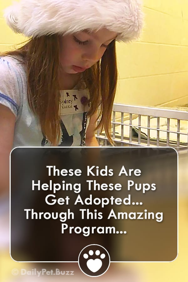 These Kids Are Helping These Pups Get Adopted... Through This Amazing Program...