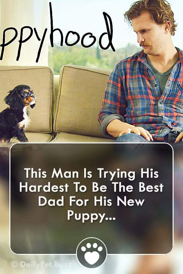 This Man Is Trying His Hardest To Be The Best Dad For His New Puppy...