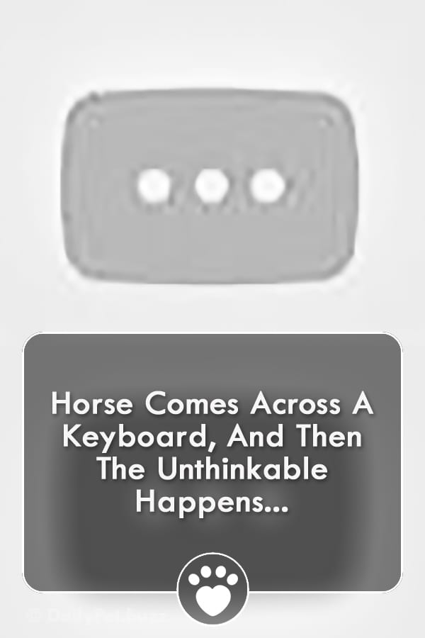 Horse Comes Across A Keyboard, And Then The Unthinkable Happens...