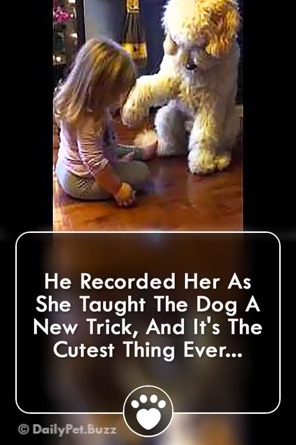 He Recorded Her As She Taught The Dog A New Trick, And It\'s The Cutest Thing Ever...