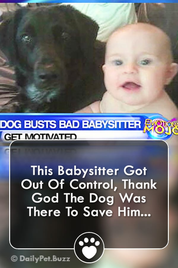 This Babysitter Got Out Of Control, Thank God The Dog Was There To Save Him...