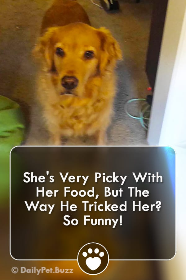 She\'s Very Picky With Her Food, But The Way He Tricked Her? So Funny!