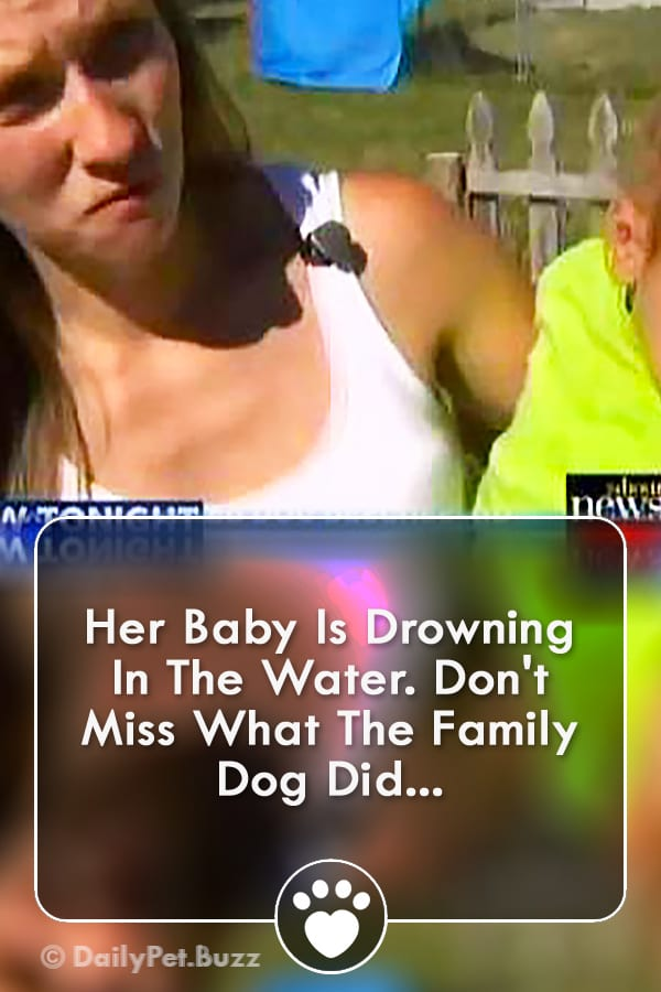 Her Baby Is Drowning In The Water. Don\'t Miss What The Family Dog Did...