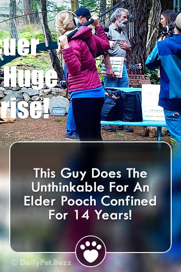 This Guy Does The Unthinkable For An Elder Pooch Confined For 14 Years!