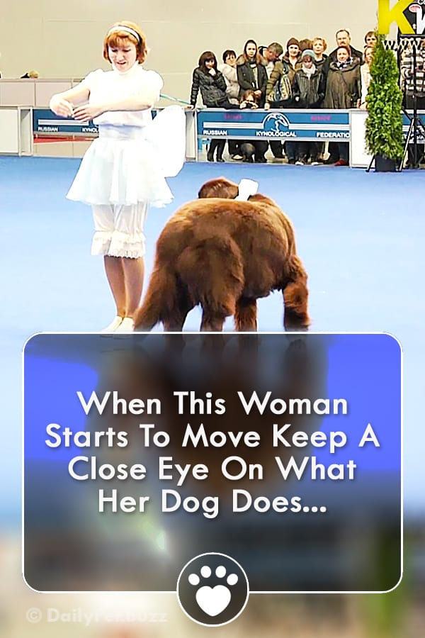 When This Woman Starts To Move Keep A Close Eye On What Her Dog Does...