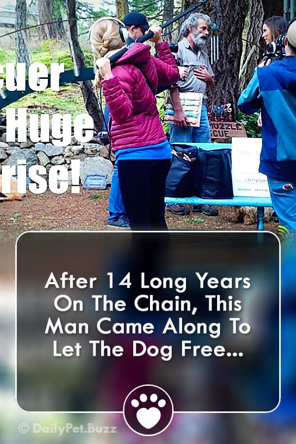 After 14 Long Years On The Chain, This Man Came Along To Let The Dog Free...