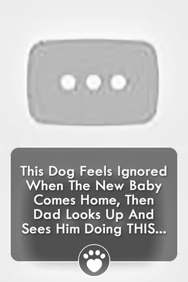 This Dog Feels Ignored When The New Baby Comes Home, Then Dad Looks Up And Sees Him Doing THIS...