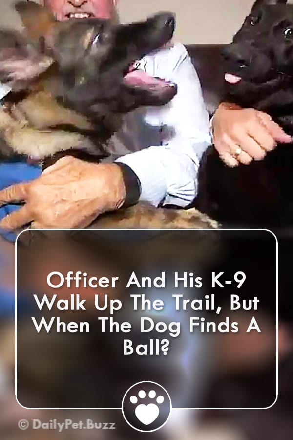 Officer And His K-9 Walk Up The Trail, But When The Dog Finds A Ball?