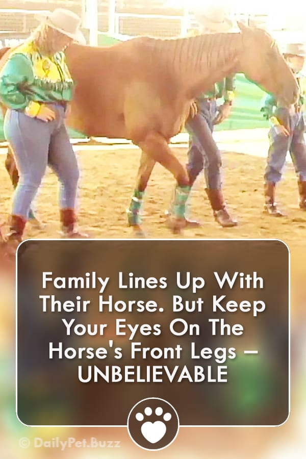 Family Lines Up With Their Horse. But Keep Your Eyes On The Horse\'s Front Legs – UNBELIEVABLE