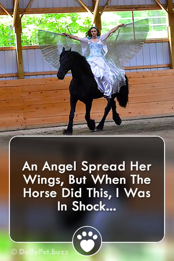 An Angel Spread Her Wings, But When The Horse Did This, I Was In Shock...