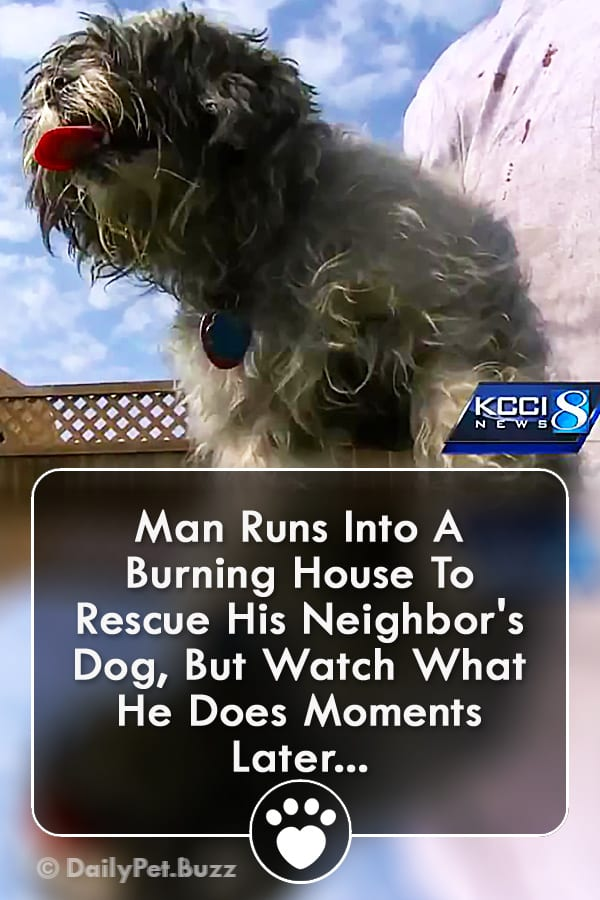 Man Runs Into A Burning House To Rescue His Neighbor\'s Dog, But Watch What He Does Moments Later...