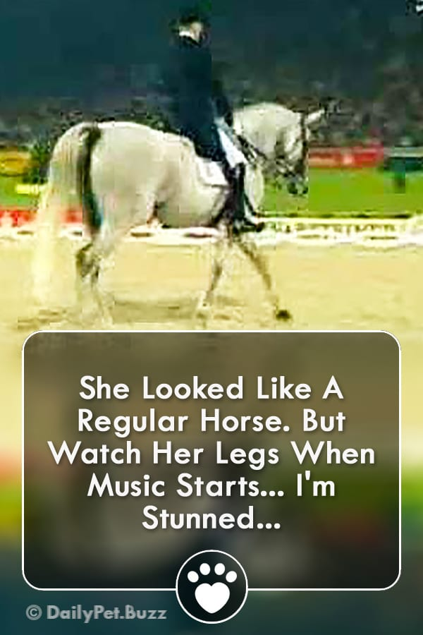 She Looked Like A Regular Horse. But Watch Her Legs When Music Starts... I\'m Stunned...