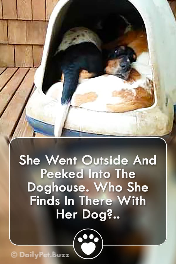 She Went Outside And Peeked Into The Doghouse. Who She Finds In There With Her Dog?..