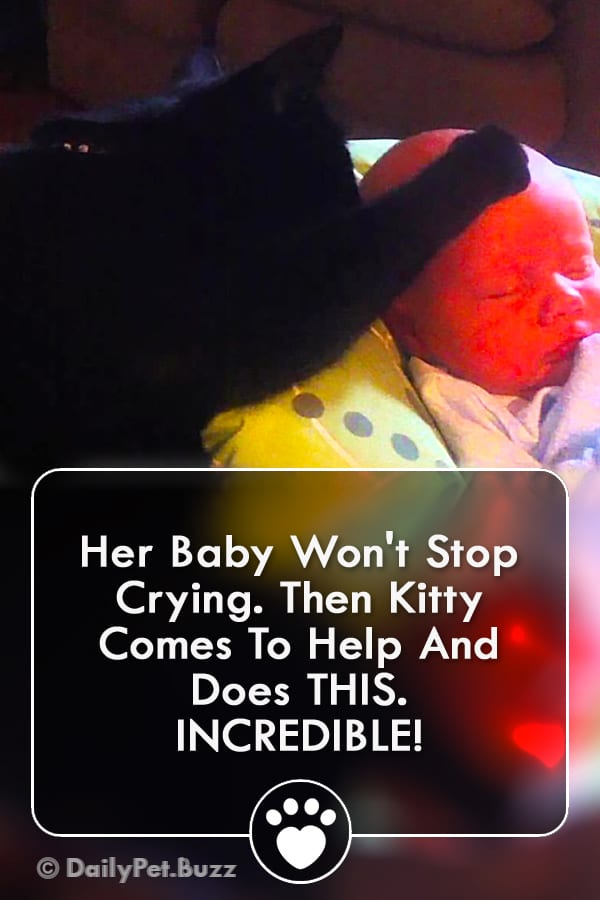 Her Baby Won\'t Stop Crying. Then Kitty Comes To Help And Does THIS. INCREDIBLE!