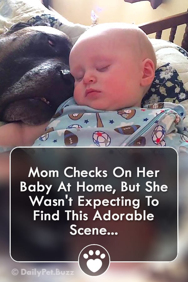 Mom Checks On Her Baby At Home, But She Wasn\'t Expecting To Find This Adorable Scene...