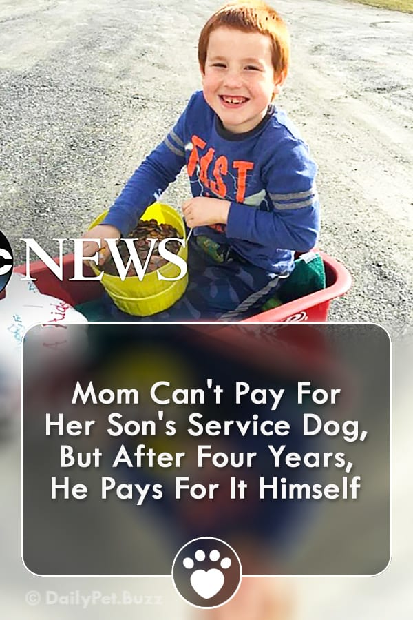 Mom Can\'t Pay For Her Son\'s Service Dog, But After Four Years, He Pays For It Himself