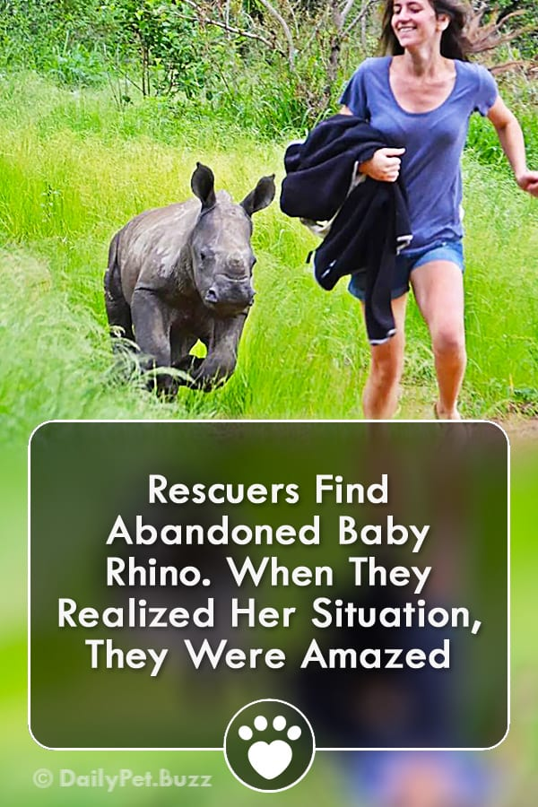 Rescuers Find Abandoned Baby Rhino. When They Realized Her Situation, They Were Amazed