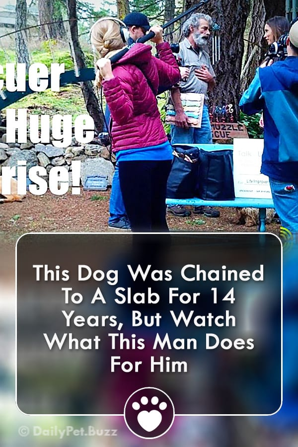 This Dog Was Chained To A Slab For 14 Years, But Watch What This Man Does For Him