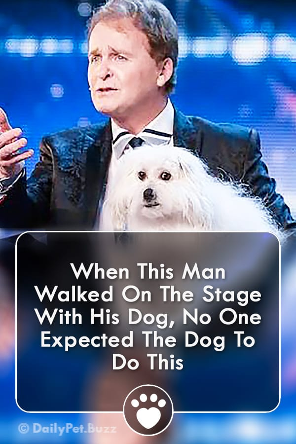 When This Man Walked On The Stage With His Dog, No One Expected The Dog To Do This