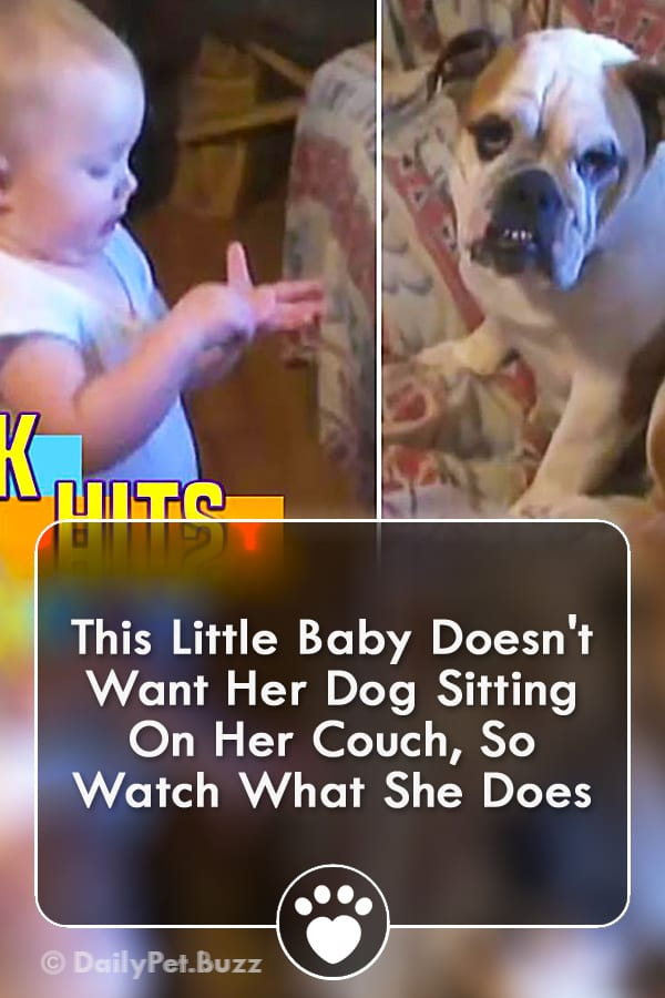 This Little Baby Doesn\'t Want Her Dog Sitting On Her Couch, So Watch What She Does