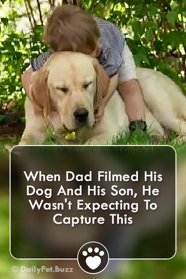 When Dad Filmed His Dog And His Son, He Wasn\'t Expecting To Capture This