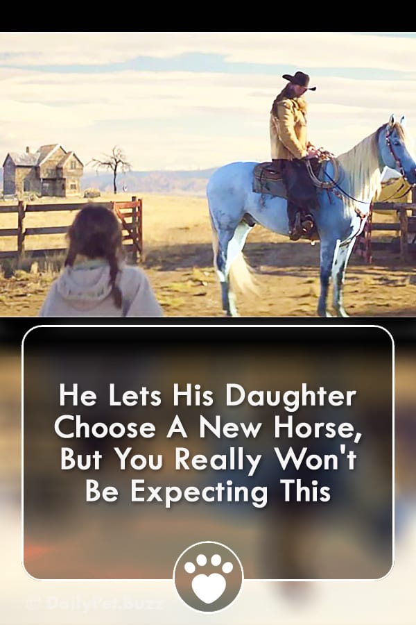 He Lets His Daughter Choose A New Horse, But You Really Won\'t Be Expecting This