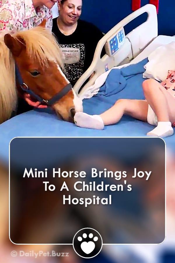 Mini Horse Brings Joy To A Children\'s Hospital