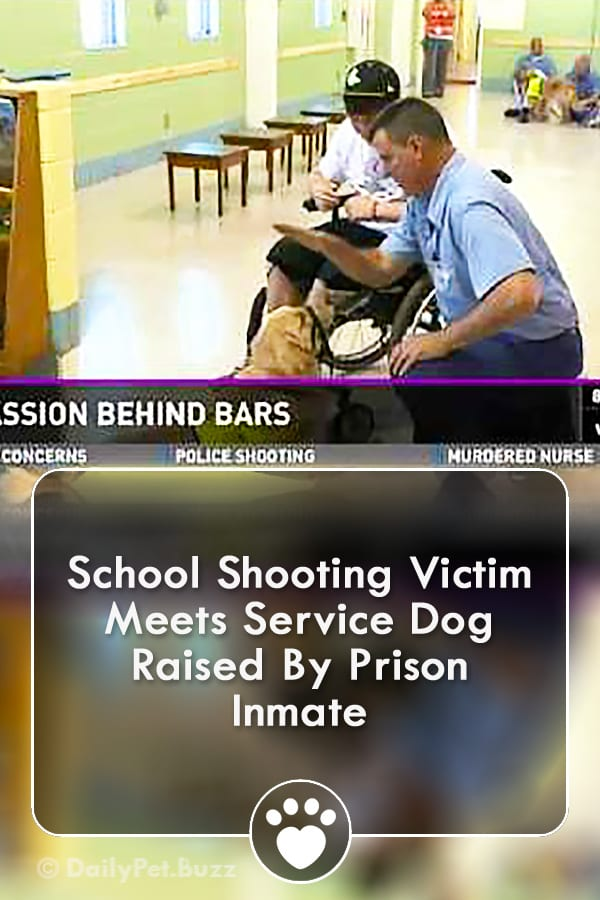 School Shooting Victim Meets Service Dog Raised By Prison Inmate