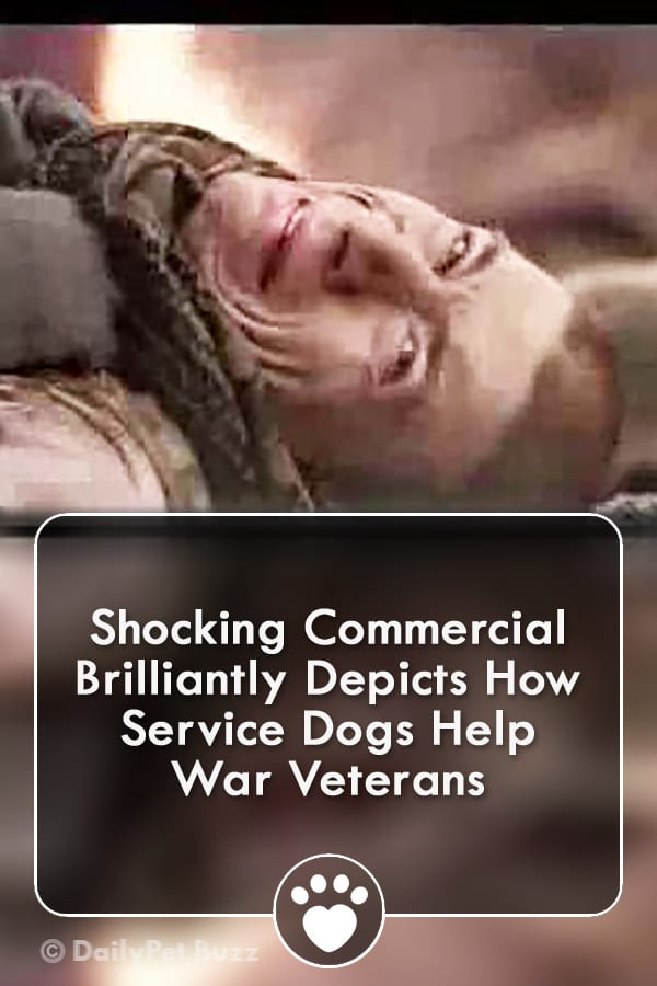 Shocking Commercial Brilliantly Depicts How Service Dogs Help War Veterans