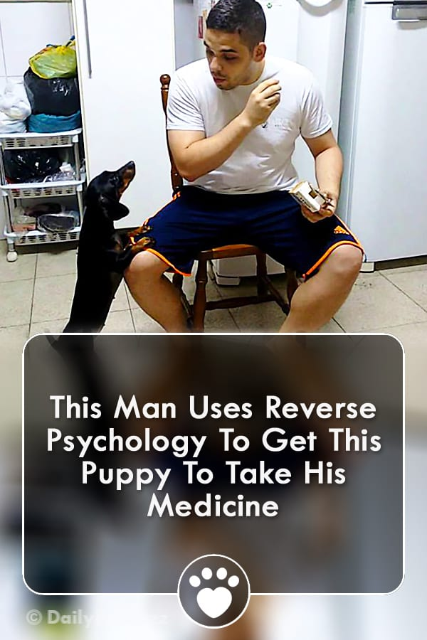 This Man Uses Reverse Psychology To Get This Puppy To Take His Medicine