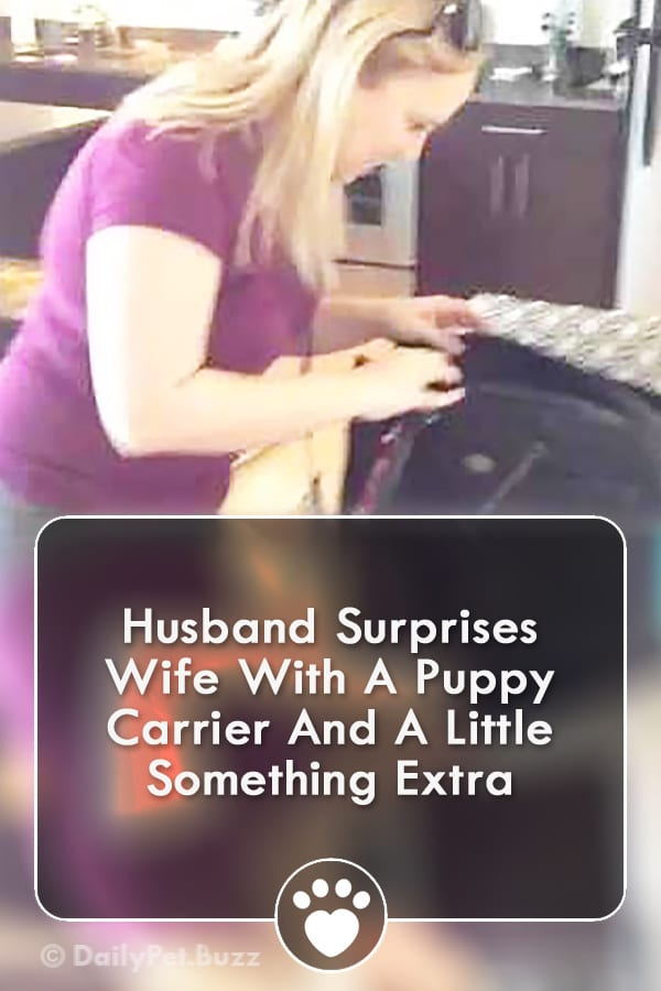 Husband Surprises Wife With A Puppy Carrier And A Little Something Extra
